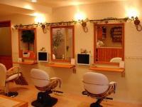松山市のおすすめ美容室・ヘアサロン -elua Mahaloの画像